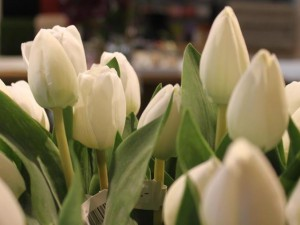 Blomsterskrud på Mur & Kaminkultur